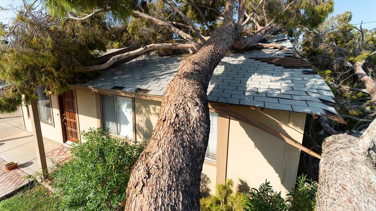 Residential Property Insurance Claims Lawyers